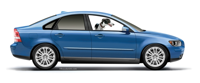 A Volvo S40 and a Greyhound