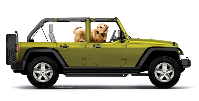A Jeep Wrangler and a Yellow Labrador