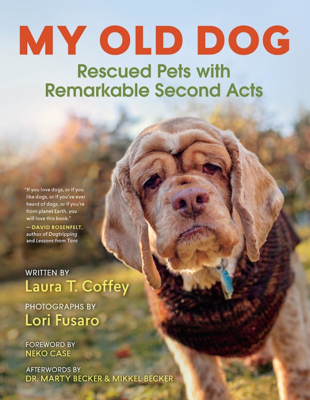 The cover of the book My Old Dog: Rescued Pets with Remarkable Second Acts features quite a character: Stacie, a female cocker spaniel rescued by the group Old Dog Haven in Washington state.