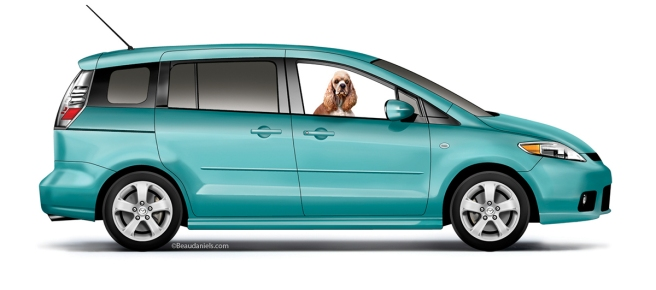 A Mazda and a Spaniel