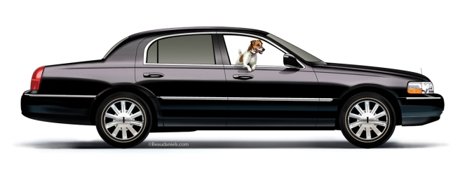 A 2007 Lincoln and a Jack Russell