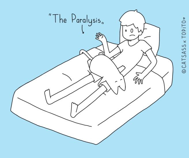 #8 The Paralysis