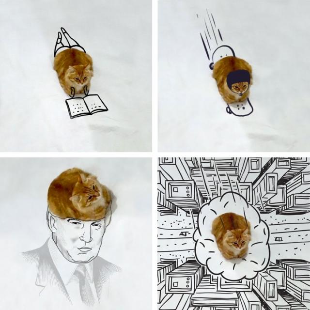 DoodleCat0