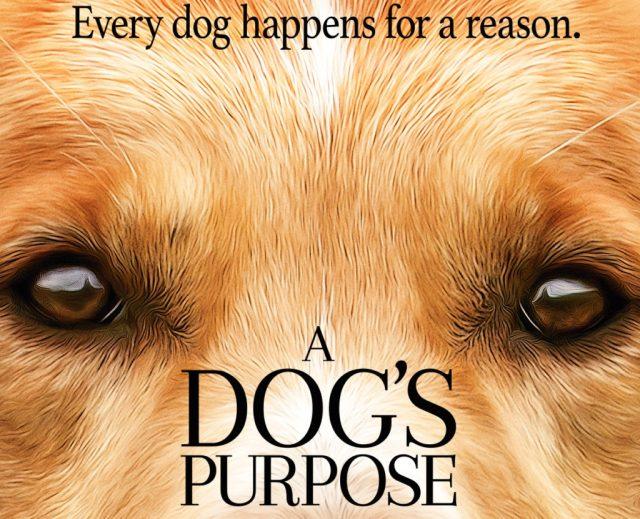 dogs-purpose-one-sheet-1024x831
