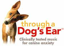 through-a-dogs-ear-banner